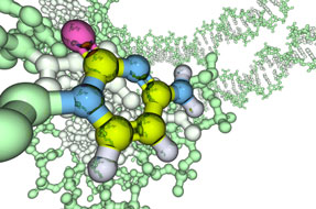 phytochemicals2